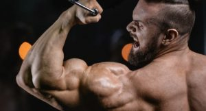 action of anabolic steroids